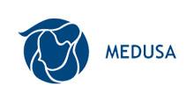 Medusa Mining